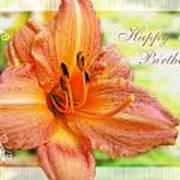 Daylily Greeting Card Birthday Poster