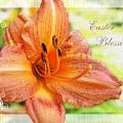 Daylily Greeting Card Easter Poster