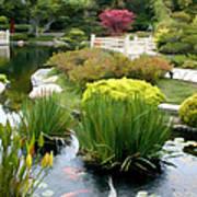 Deep Panorama Of Japanese Garden And Koi Poster