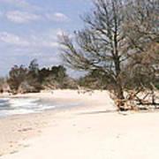 Deserted Island Poster
