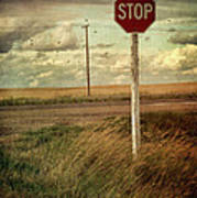 Deserted Red Stop Sign On The Prairies Poster by Sandra Cunningham