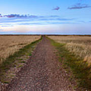 Dirt Road Through The Prairie Poster