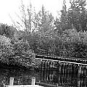 Dock On The River In Black And White Poster