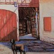 Dog And Barn Poster