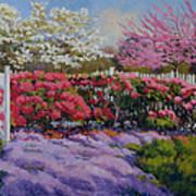 Dotti's Garden Spring Poster