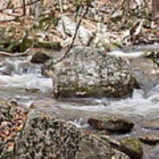 Downstream From Cascade Falls Poster