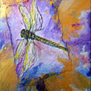 Dragonfly Dreams Poster by M C Sturman