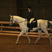Dressage Looking Good Poster