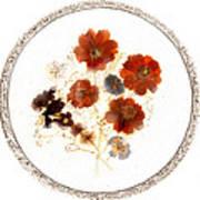 Dried Flower Art Poster