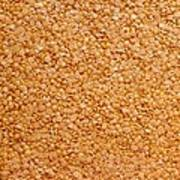 Dried Lentils, A Type Of Pulse Poster