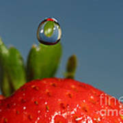 Droplet Falling On A Strawberry Poster