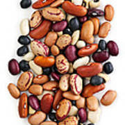 Dry Beans Poster by Elena Elisseeva