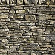 Dry Stone Wall, Dorset Poster