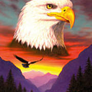 Eagle Poster by MGL Studio - Chris Hiett