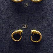 Earrings Poster