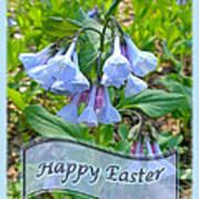 Easter Card - Virginia Bluebells Poster