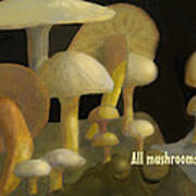 Edible Mushrooms Poster