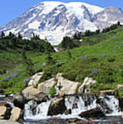Edith Creek Mt Rainier Wa Poster