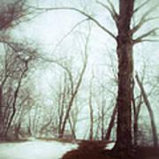Eerie Winter Woods Poster