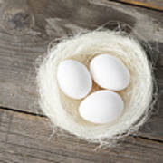 Eggs In Nest On Wooden Counter Poster