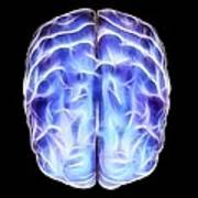 Electrical Activity In The Brain Poster