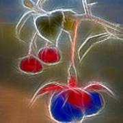 Electrifying Fuchsia Poster