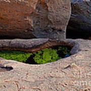 Emerald Pool Poster