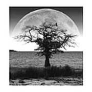 Enchanted Moon Poster