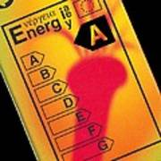 Energy Efficiency Rating Label Poster by Sheila Terry