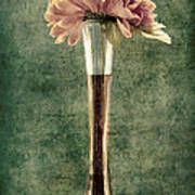 Estillo Vase - S02et01 Poster by Variance Collections