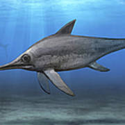 Eurhinosaurus Longirostris Swimming Poster