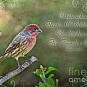 Evening Finch Greeting Card With Verse Poster