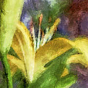 Exotic Lily In Oil Poster