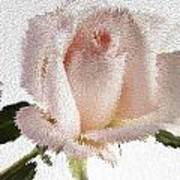 Exploding Pink Rose Poster by M K  Miller