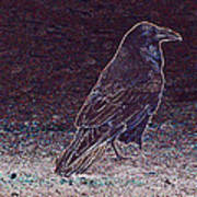 Faithful Raven Poster