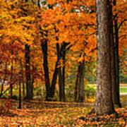 Fall At Home Poster