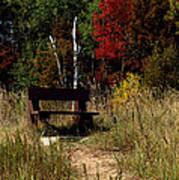 Fall Bench Dreams Poster