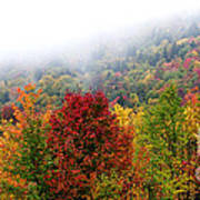 Fall Color Panoramic Poster