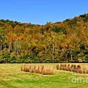 Fall Color Randolph County West Virginia Poster