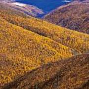 Fall Colours Along Top Of The World Poster