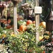 Fall Garden Poster