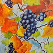 Fall Grapes Poster by Carole Powell