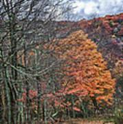 Fall Hiking Near Mountain Lake Poster