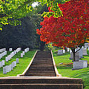 Fall In Arlington Cemetery  Poster