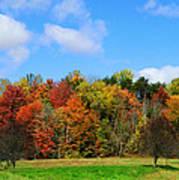 Fall In North Carolina Poster