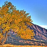 Fall In The Flatirons Poster