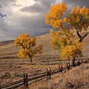Fall In Yellowstone Poster
