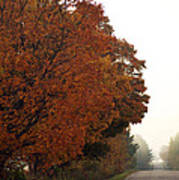 Fall Laneway Poster