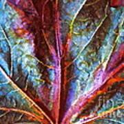 Fall Up Close Poster