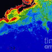 False Col Satellite Image Poster by Dr. Gene Feldman, NASA Goddard Space Flight Center